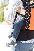 Tula Ergonomic Baby Carrier - Pesky (Mesh) - Standard Size