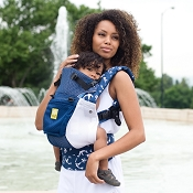 * LILLEbaby COMPLETE Airflow Baby Carrier - Anchors Away
