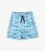Hatley Shark Alley Swim Trunks *CLEARANCE*