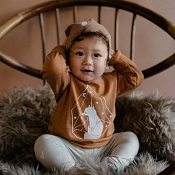 Little & Lively Fox Pullover - Fox Brown