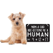*Pearhead Pet's Baby Announcement Chalkboard