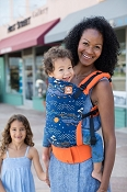 Tula Ergonomic Baby Carrier - Scenic Drive -Standard Size